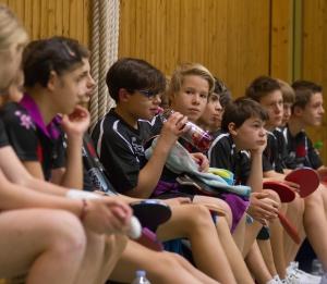 altersgerechte Trainingsgruppen in der Zsolt Hollo Tischtennisschule